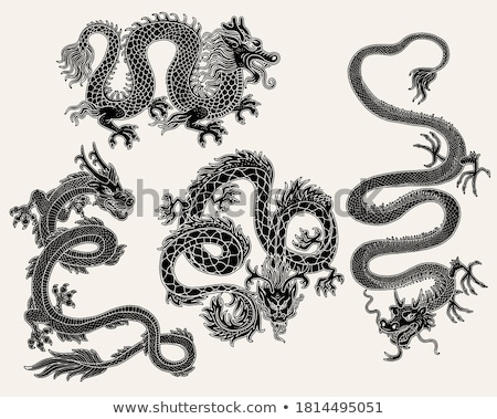 set of oriental dragon tattoos vector isolated asian ornament stock photo © vasilixa