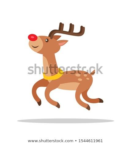 Engraçado desenho animado rena luxo vista lateral Foto stock © robuart