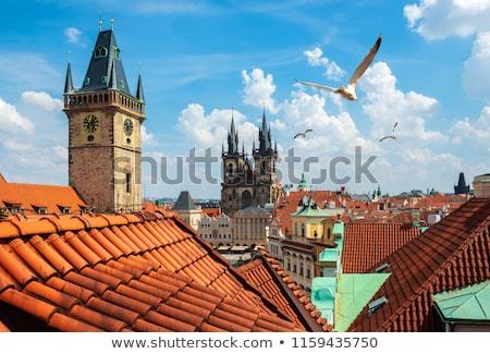 Stok fotoğraf: Kuşlar · kare · Prag · katedral · yaz