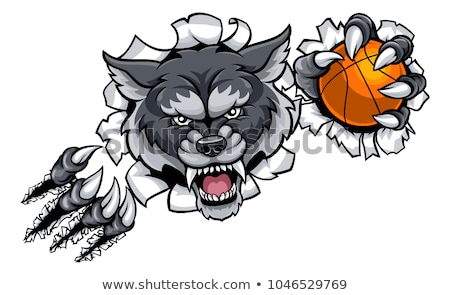 Сток-фото: Wolf Basketball Mascot Breaking Background
