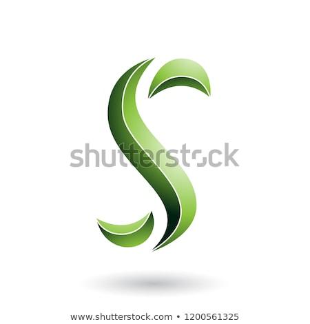Zöld csíkos kígyó alakú levél vektor Stock fotó © cidepix