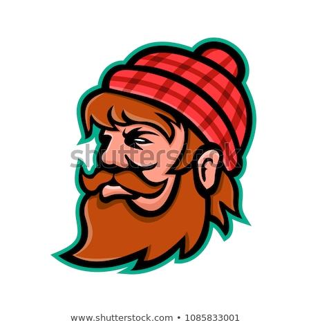 лесоруб талисман икона иллюстрация голову гигант Сток-фото © patrimonio
