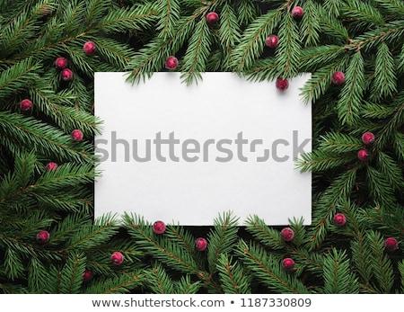 Noel tatil kâğıt levha metin Stok fotoğraf © Kotenko