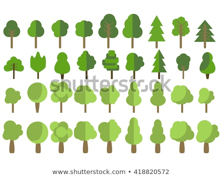 Cartoon bush and tree set. Vector trees and bushes isolated on white background, nature green forest Stock photo © MarySan