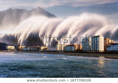 Tsunami cidade ilustração casa natureza mar Foto stock © bluering