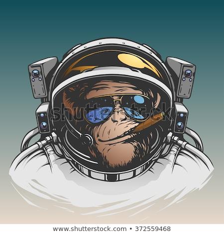 cartoon smiling astronaut chimpanzee stock photo © cthoman