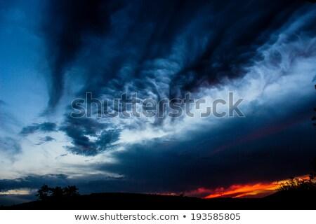 tornado · ilustración · útil · arte · velocidad · poder - foto stock © bluering