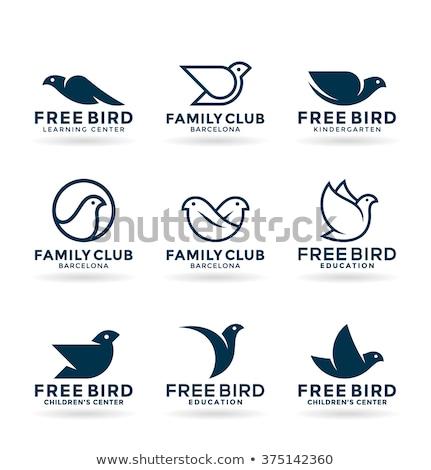 Gestileerde duif vector icon teken Stockfoto © blaskorizov