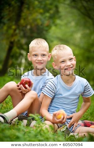 Portré kettő mosolyog iker fiútestvérek áll Stock fotó © deandrobot