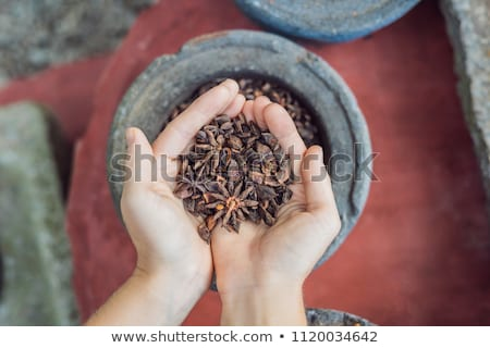 Badyan, anise in female hands against the backdrop of spices Stock photo © galitskaya