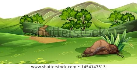多くの · 恐竜 · 湖 · 実例 · 風景 · 庭園 - ストックフォト © bluering