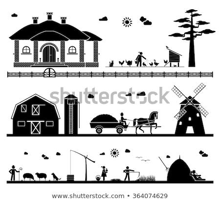 Stock photo: Farmer Feeding Chickens and Geese on Farm Vector
