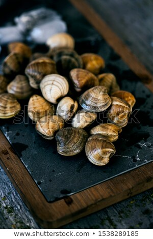 fresh raw clams on a slate tray