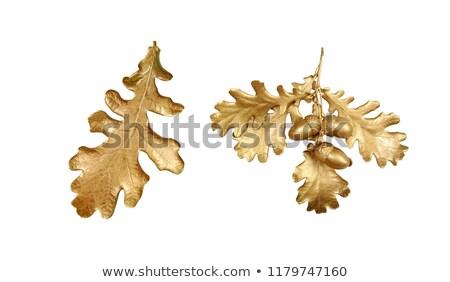 Arany makk karácsony dekoráció kéz orgona Stock fotó © artjazz