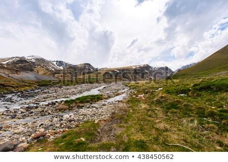 Panorâmico ver montanha paisagem floresta Foto stock © Leonidtit