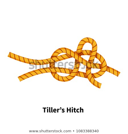 Tiller's Hitch sea knot. Bright colorful how-to guide on white Stock photo © evgeny89