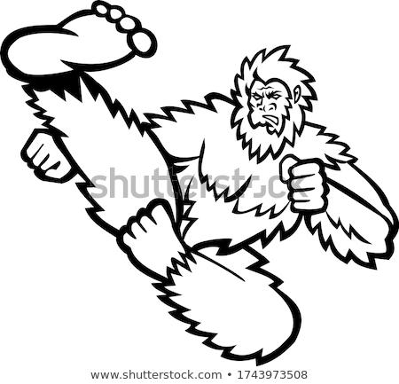 Taekwondo Bigfoot Flying Kick Mascot Black and White Stock photo © patrimonio