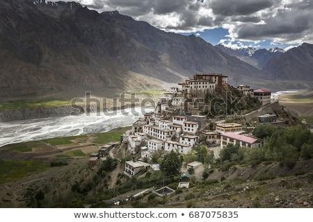 表示 谷 川 ヒマラヤ山脈 インド 村 ストックフォト © dmitry_rukhlenko