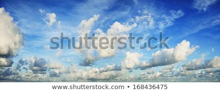 壮大な 午前 空 パノラマ ショット 自然 ストックフォト © moses