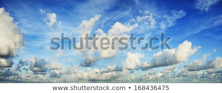 Spectaculaire ochtend hemel panoramisch shot natuur Stockfoto © moses