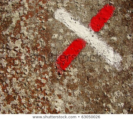 spurs and mold mould grunge surface with red and white painted c Stock photo © Melvin07