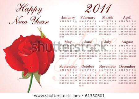 Streszczenie 2011 wzrosła biuro charakter plakat Zdjęcia stock © pathakdesigner