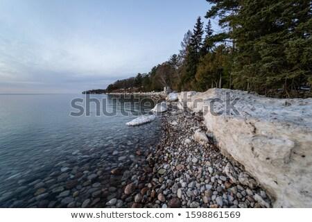 Tó Ontario tengerpart tél fedett törött Stock fotó © brianguest