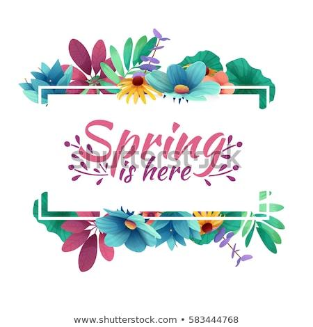 Primavera marco verde flores mariposas estrellas Foto stock © marinini
