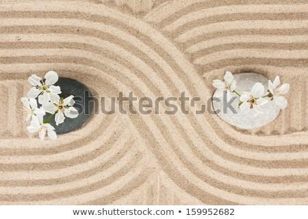 zen · pierre · sable · pierres · soft - photo stock © davidgn