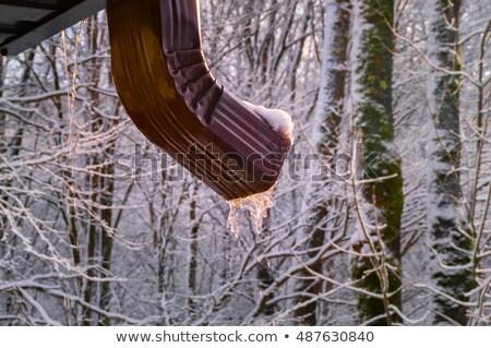 eau · pipe · congelés · toit · bâtiment · glace - photo stock © ruslanomega