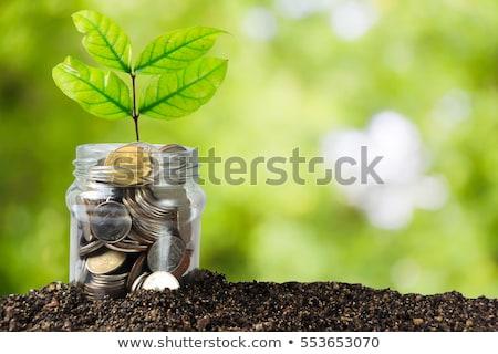 Dollar · stilisierten · Phantasie · mythischen · grünen - stock foto © macropixel