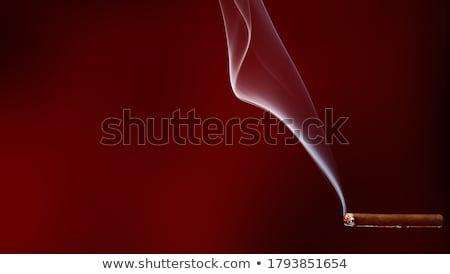 Palenia mały cygara starsza kobieta odizolowany Zdjęcia stock © winterling