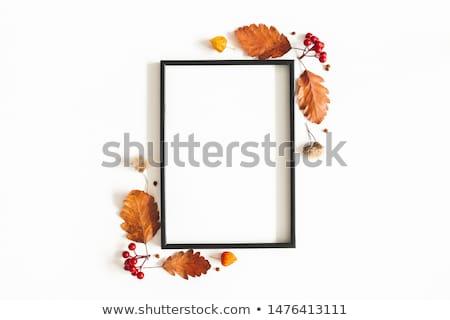 ストックフォト: 秋 · フレーム · ツリー · 自然 · 芸術 · オレンジ