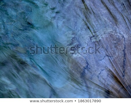 colorful stones in the clear cold water of a creek with water fr stock photo © meinzahn