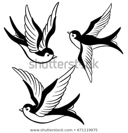 Phoenix · madár · tetoválás · tűz · terv · háttér - stock fotó © creative_stock