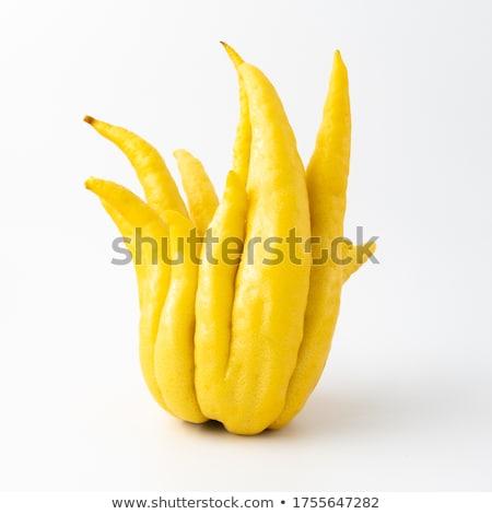 El limon yalıtılmış beyaz gıda kadın Stok fotoğraf © doupix