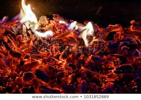 Brucia carbonio verde barbeque fuoco Foto d'archivio © Koufax73