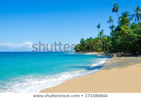 Summer Vacation on Costa Rica Beach Stock photo © stevanovicigor
