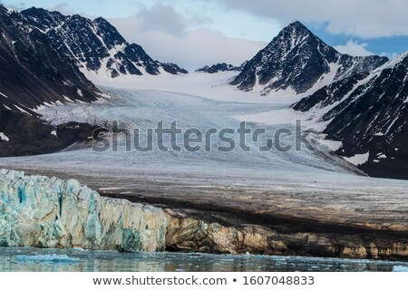 Coastal Glacier coming out of the Mountains Stock photo © wildnerdpix