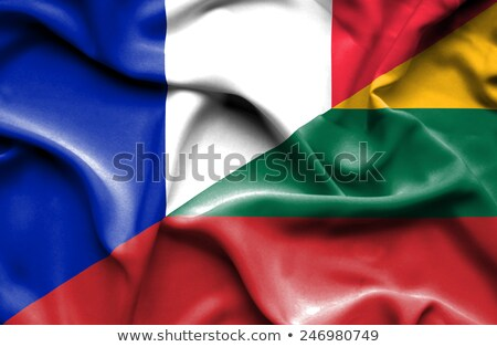 Franciaország Litvánia zászlók puzzle izolált fehér Stock fotó © Istanbul2009