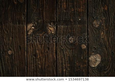 Retro rusztikus fa csomó tölgy palánk Stock fotó © stevanovicigor