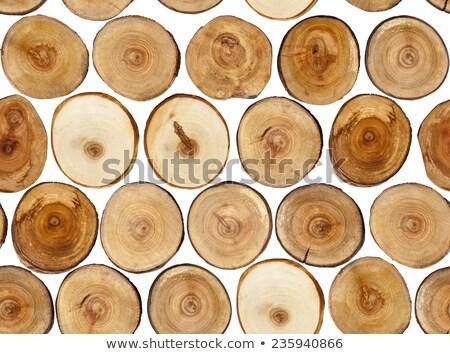 подробность · старые · тополь · дерево · Кора · природного - Сток-фото © taviphoto