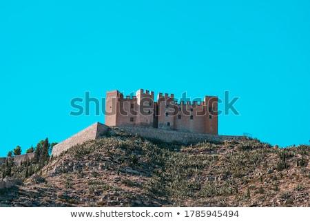 mequinenza castle stock photo © pedrosala