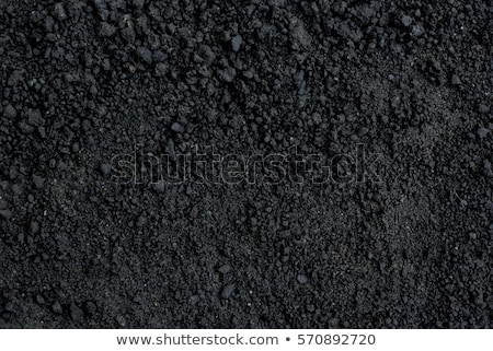 Black soil Stock photo © simply
