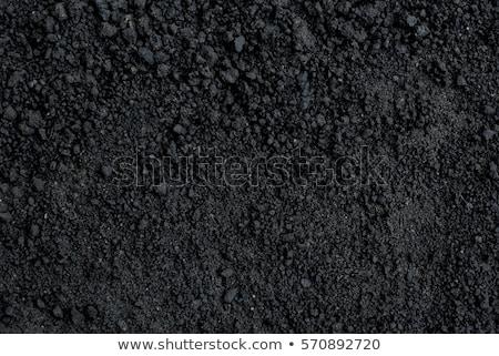 kéz · fekete · föld · kezek · tart · kert - stock fotó © simply