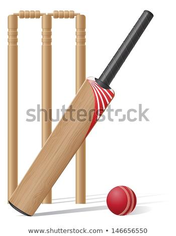 Vektör kriket bat top ahşap uygunluk Stok fotoğraf © rioillustrator