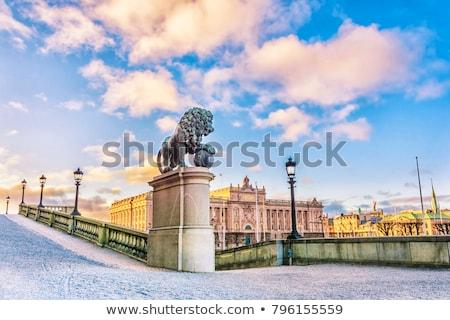 表示 ロイヤル 宮殿 ストックホルム スウェーデン 市 ストックフォト © vladacanon
