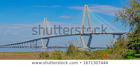 cable-stayed mounting Stock photo © tracer