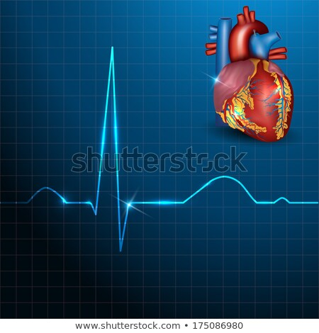 Humanos corazón ritmo hermosa azul luz Foto stock © Tefi