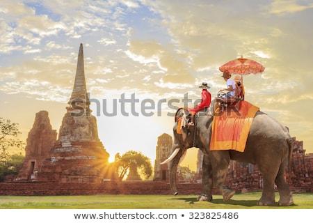 Podróży świat punkt orientacyjny krajobraz ilustracja indian Zdjęcia stock © cienpies